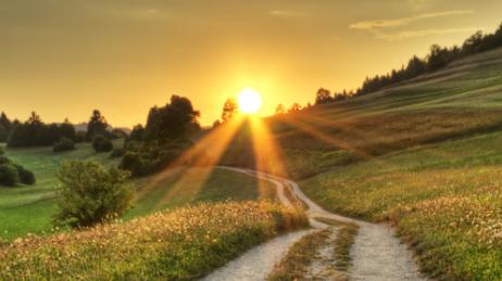 Trucos e ideas para vivir más y ser más feliz